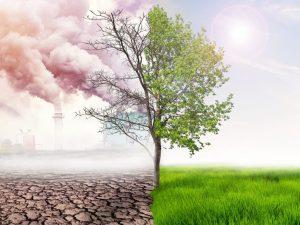 Pollution numérique : conseils pour réduire son impact sur l'environnement